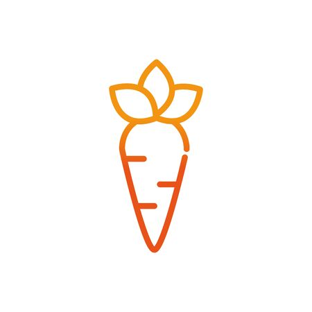 vegetable carrot food sport fitness gradient line