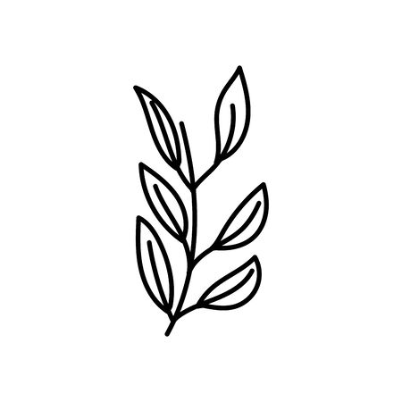branch foliage natural decoration icon thick line