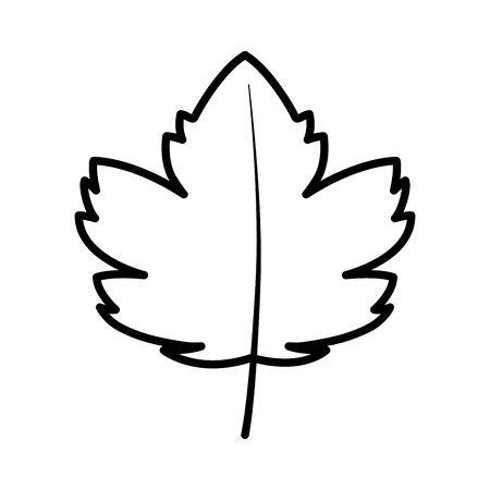 autumn maple leaf nature foliage on white background thick line