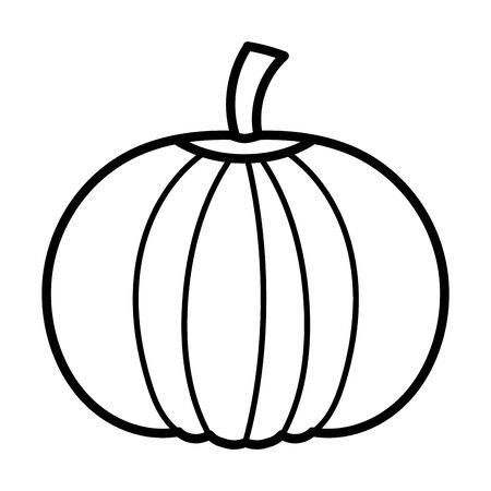 pumpkin vegetable fresh autumn on white background thick line