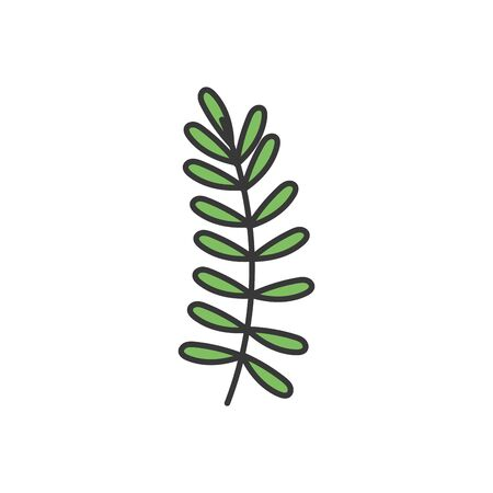 decorative nature foliage leaves branch icon vector illustration 向量圖像