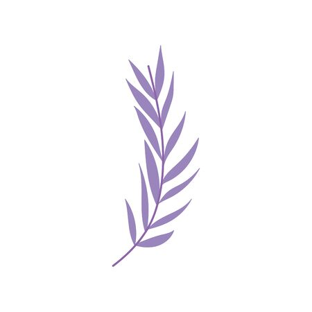 purple branch leaves foliage nature icon on white background vector illustration