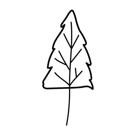 pine tree foliage autumn on white background vector illustration thick line