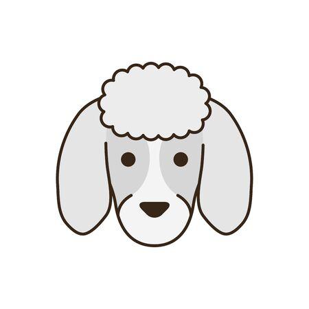 cute little dog French poodle head fill style icon Archivio Fotografico - 133722453