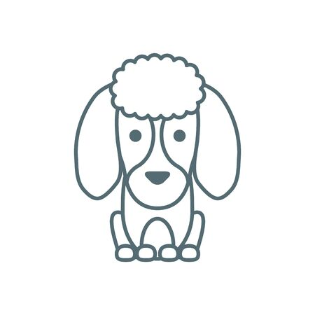 cute little dog French poodle line style icon