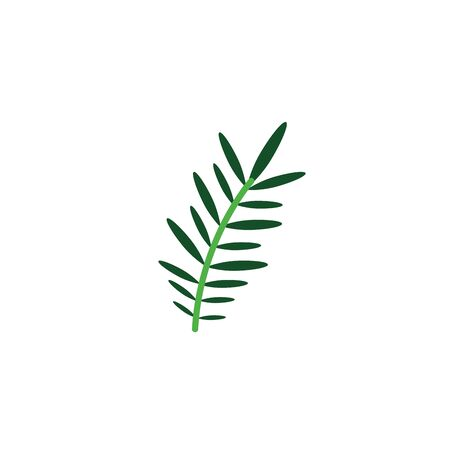 acacia branch foliage nature leaf icon flat