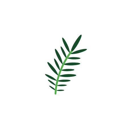 acacia branch foliage nature leaf icon flat