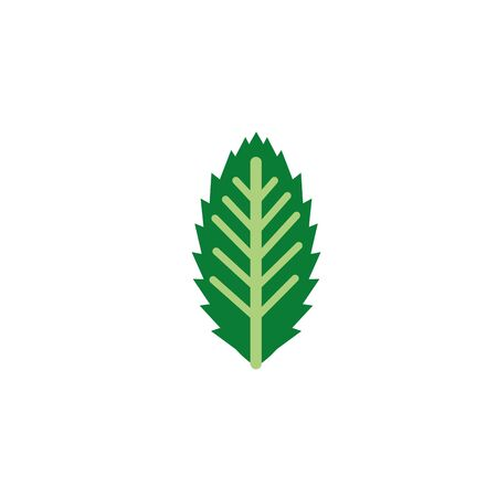 ornate foliage nature leaf icon flat vector illustration Ilustração