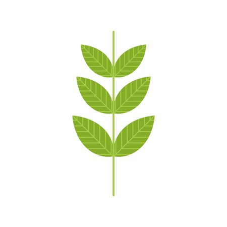 ecology renewable environment plant leaves icon