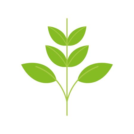 ecology renewable environment plant leaves icon vector illustration