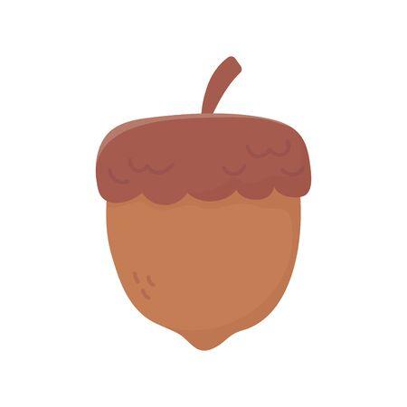 autumnal acorn nut on white background