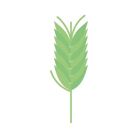 green ears of wheat harvest autumn Ilustração