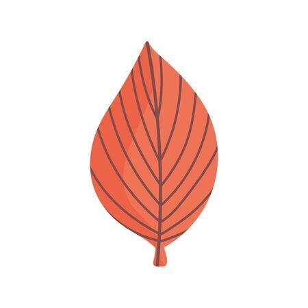 leaf foliage nature on white background Ilustração