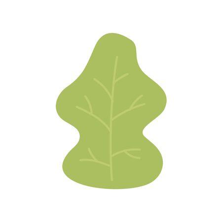 autumnal green leaf foliage nature icon