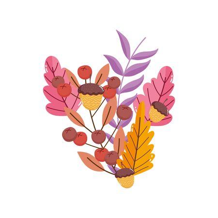 foliage nature branch leaves flower acorns Ilustração
