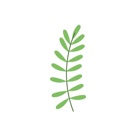 green branch leaves foliage nature icon Ilustração