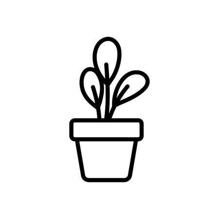 Isolated plant inside pot vector design