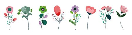 set of differents flowers decoration on white background vector illustration