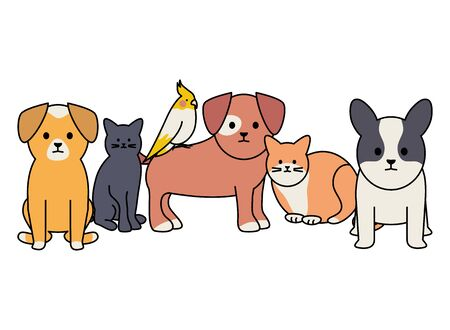 cute group of mascots adorables characters vector illustration design