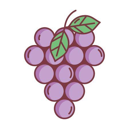 bunch grapes hello autumn design icon