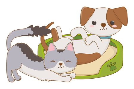Isolated cat and dog cartoon design
