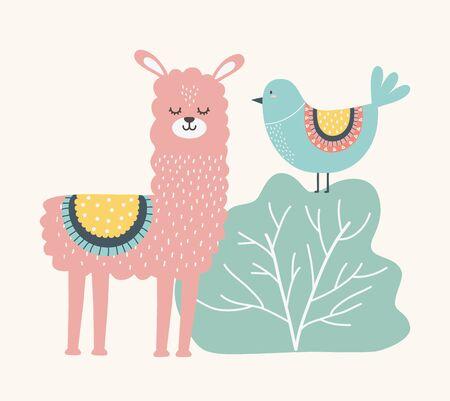Llama and bird cartoon design, Animal cute zoo life nature and fauna theme Vector illustration