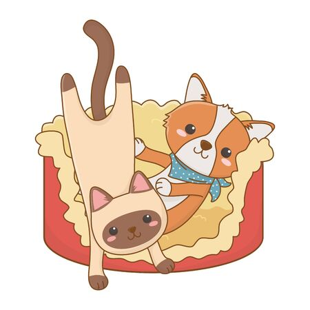 Cat and dog cartoon design vector illustration