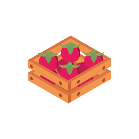 farm tomatoes in box harvest agriculture isometric icon vector illustration