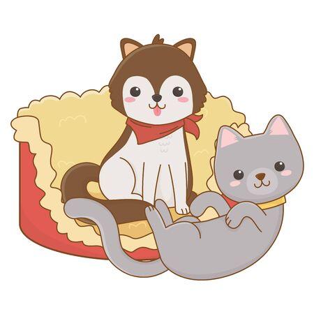 Cat and dog cartoon design, Mascot pet animal domestic cute life nature and fauna theme Vector illustration
