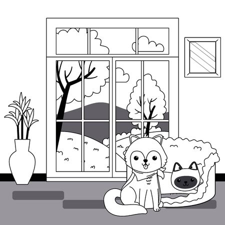 Cat and dog cartoon design, Mascot pet animal domestic cute life nature and fauna theme Vector illustration