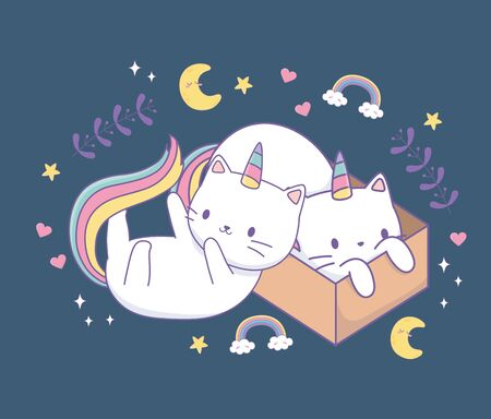 cute cats with rainbow tail and carton box kawaii characters vector illustration