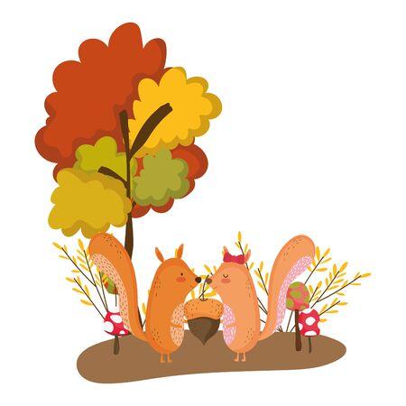 Conception de dessin animé d'écureuil, animal mignon zoo vie nature et faune thème Vector illustration
