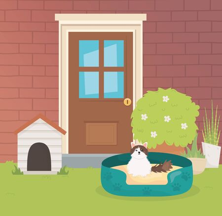 cat with bed outside of house pet care vector illustration
