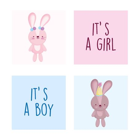 boy or girl, gender reveal cute rabbit female and male cards vector illustration