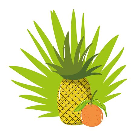 Pineapple and orange fruit vector design Ilustrace