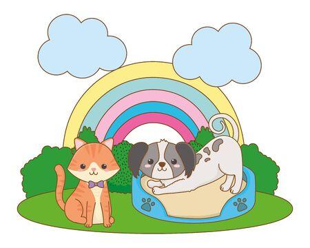 Cat and dog cartoon design vector illustrator Illustration