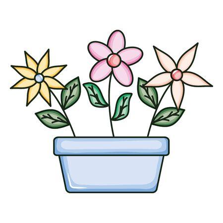 beautiful flowers garden in square ceramic pot Stock fotó - 137873767