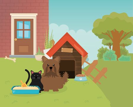 cat litter box and dog with house fence garden pet care