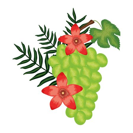 fresh grapes fruits and floral decoration