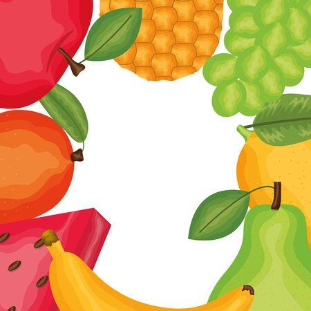 set of fresh fruits tropical frame