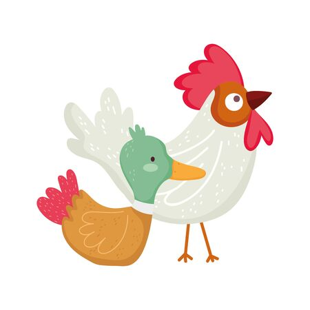 rooster and duck farm animal cartoon