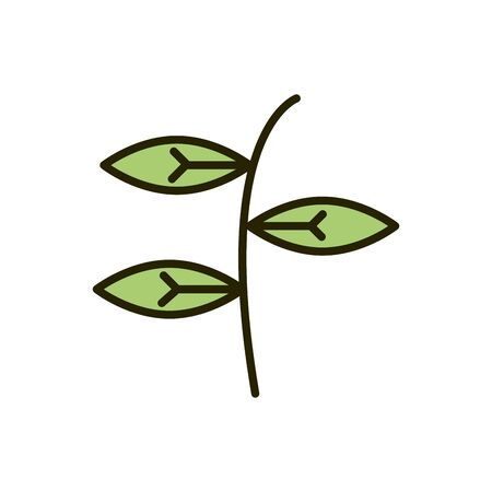 branch leaves foliage nature drawing