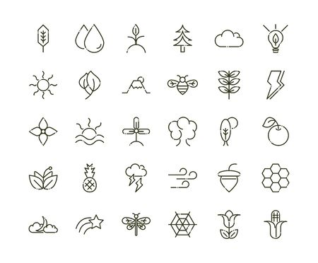 forest foliage ecology nature line design icons set vector illustration Ilustracja