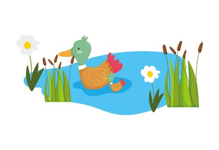 ducks lake plants flower greenery farm animal cartoon vector illustration