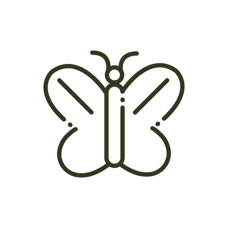 butterfly insect nature line design vector illustration Archivio Fotografico - 138416244
