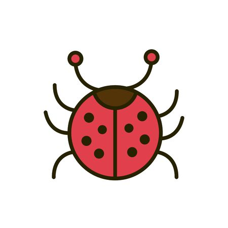 ladybug insect wildlife nature drawing vector illustration