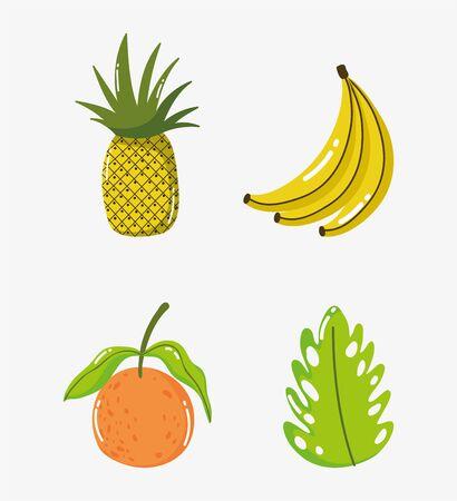tropical fruits orange pineapple banana leaf vector illustration