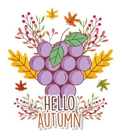 bunch grapes foliage leaves hello autumn design icon vector illustration Ilustrace