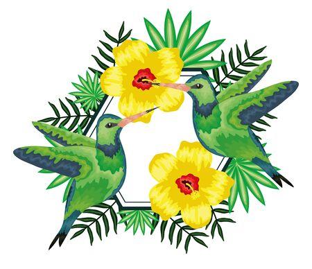 beautiful hummingbirds with tropical floral decoration vector illustration design Illustration