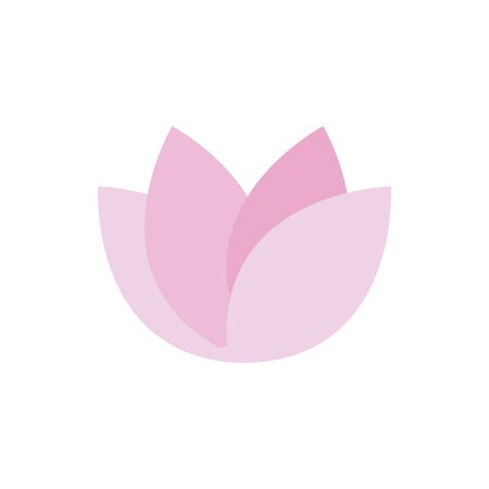 flower lotus decoration natural floral botanical
